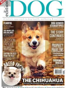 Edition Dog – Issue 24 – 29 October 2020