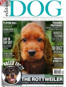 Edition Dog – Issue 30 – 1 April 2021