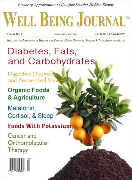 Well Being Journal – January-February 2013