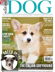 Edition Dog – Issue 34 – July 2021