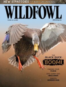 Wildfowl – October 2021